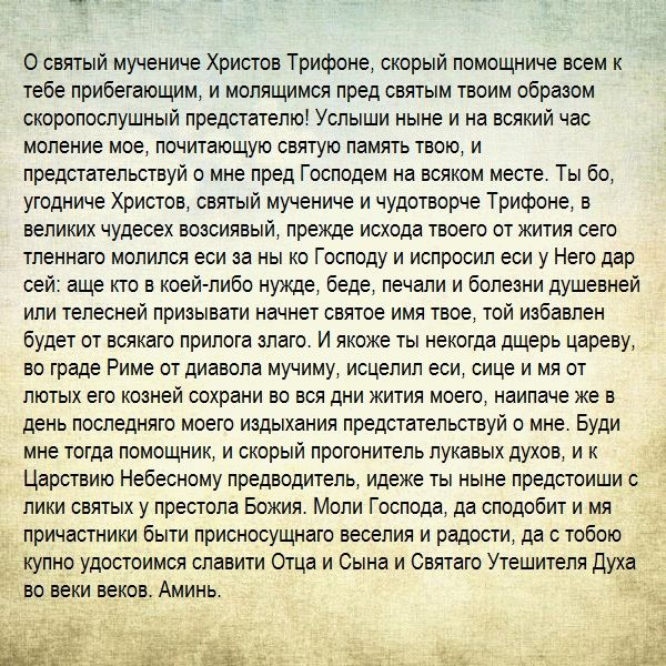 молитва Святому Трифону