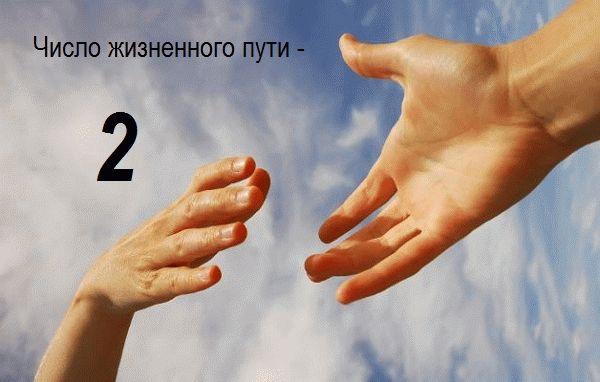 число жизненного пути - 2