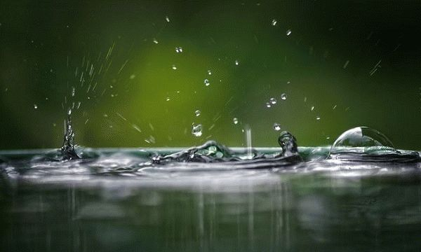 пузыри на лужах во время дождя